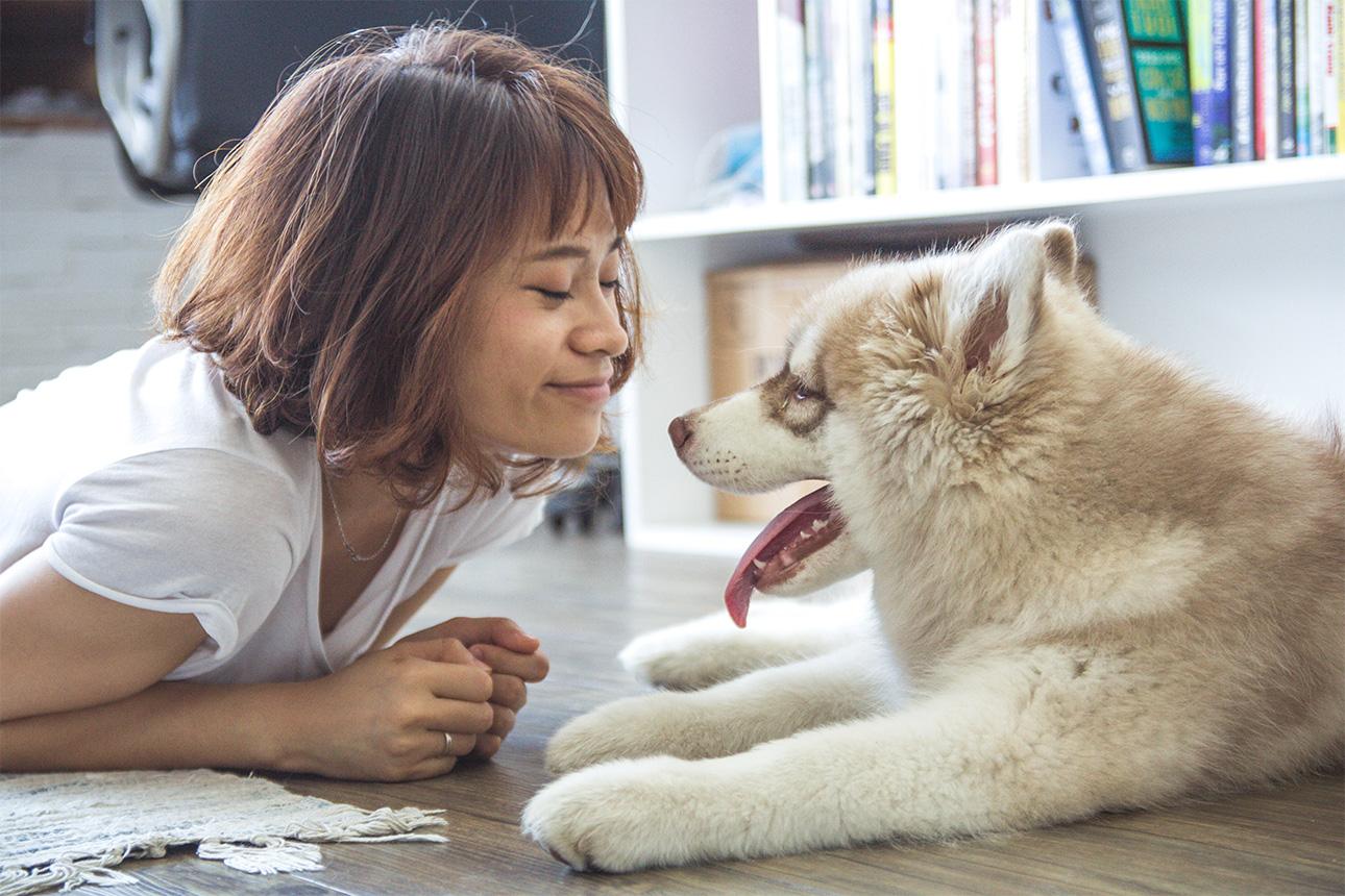 dog-lover