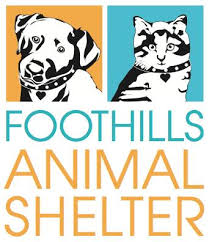 Foothills Animal Shelter is an open-admissions facility, which means we never turn away an animal