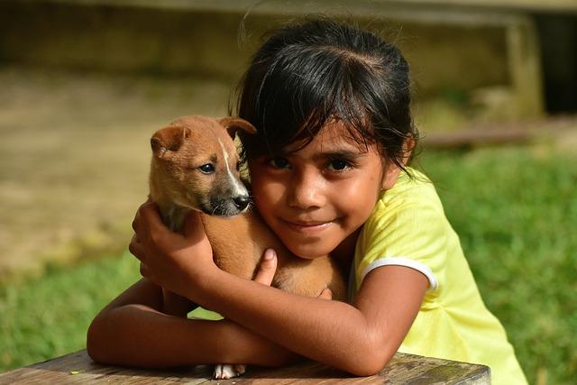 puppy-3074154_640